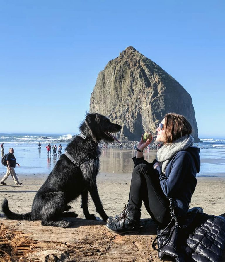 girl sitting with dog on a beach playing ball
