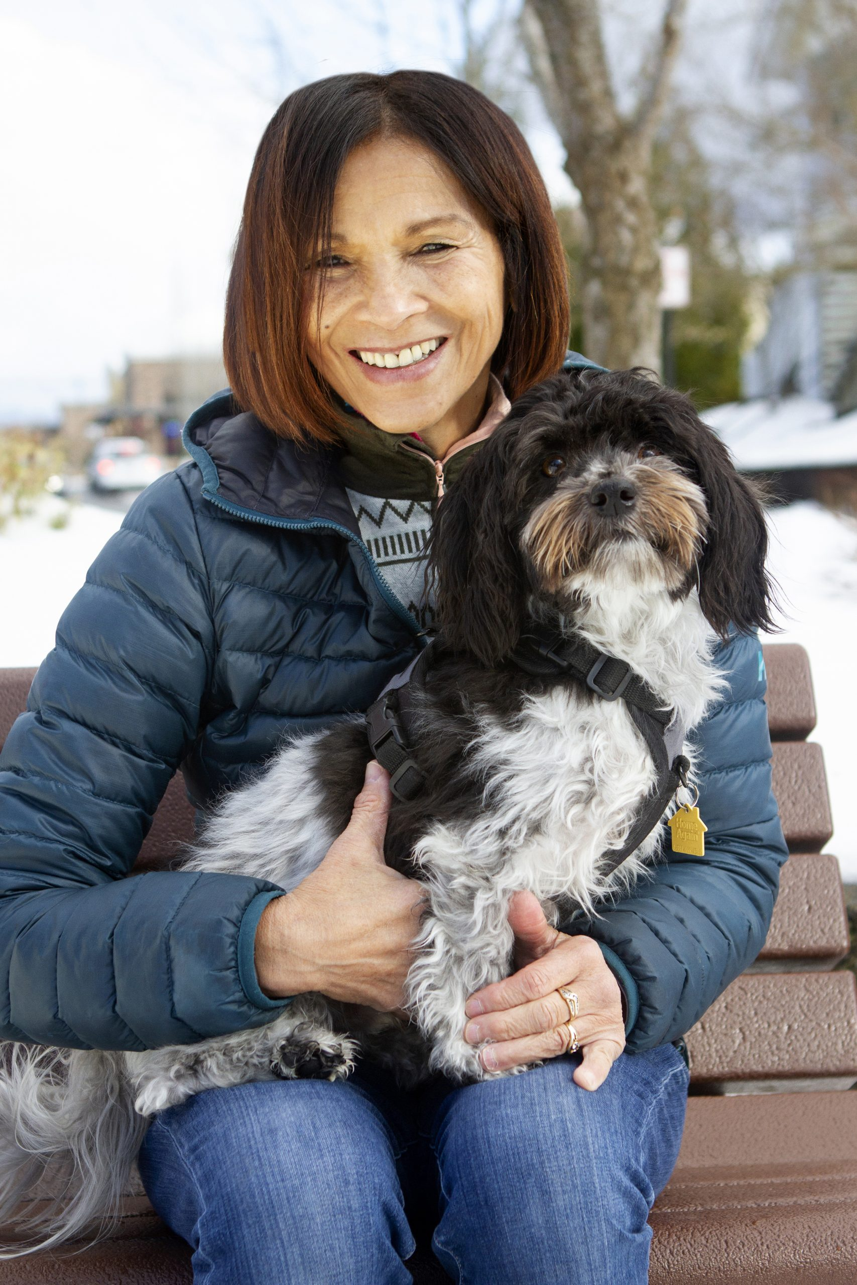 woman with Havanese dog in lap