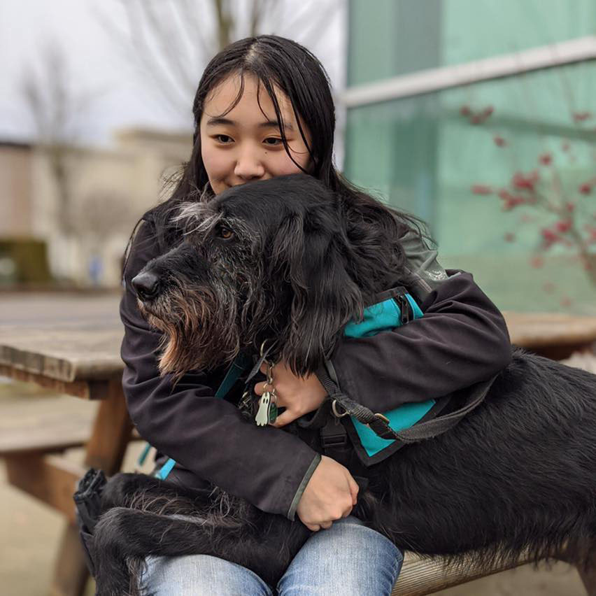 A young woman sitting with her service dog with his 2 front paws up on her lap. The dog is a black labradoodle