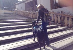 A woman climbs up steps bracing on her service dog